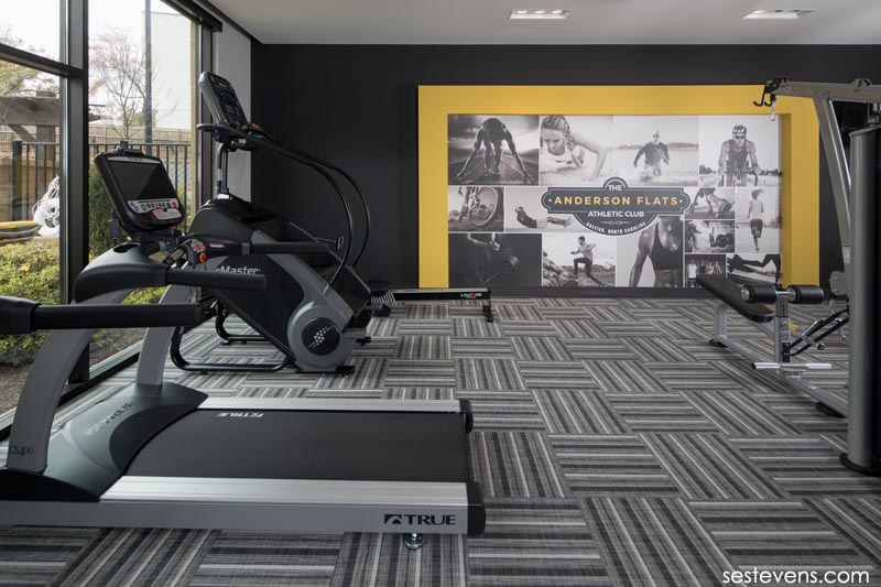 Anderson Flats apartments game fitness room